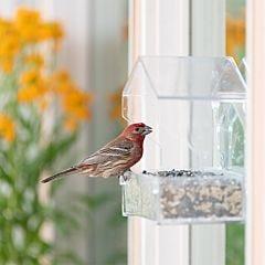 Perky-Pet® Window Bird Feeder - 1 lb Capacity