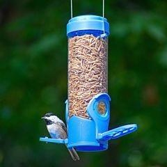 Perky-Pet® Dried Mealworm Bird Feeder with Flexports®