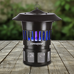DynaTrap 1/2 Acre Black Insect Trap with Optional Wall Mount