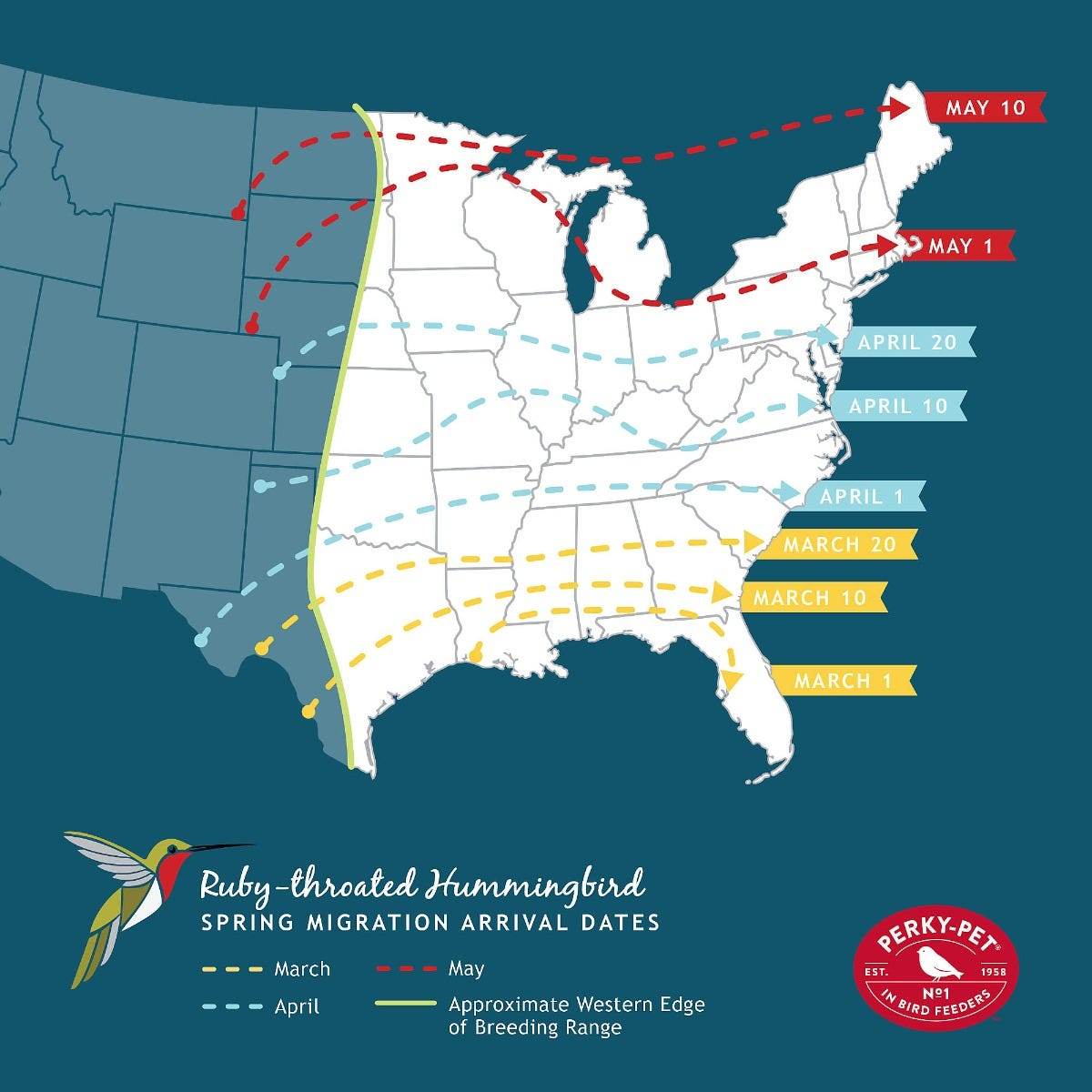 Ruby-Throated Hummingbird Spring Migration Arrival Dates