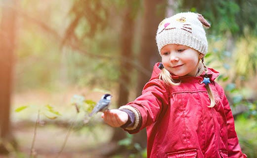 Host a Bird-Feeding Workshop for Kids & Other Customers