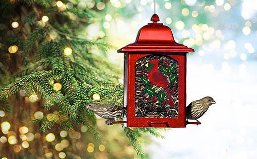 Holiday Decorating With the Help of Bird Feeders
