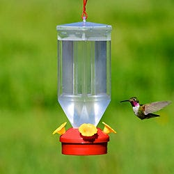 Perky-Pet Lantern Hummingbird Feeder