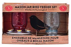 Perky-Pet Mason Jar Wild Bird Seed Feeder