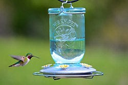 Perky-Pet Mason Jar Wild Hummingbird Feeder