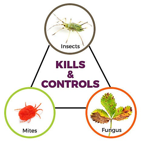 Kills and Controls Insects Mites Fungus